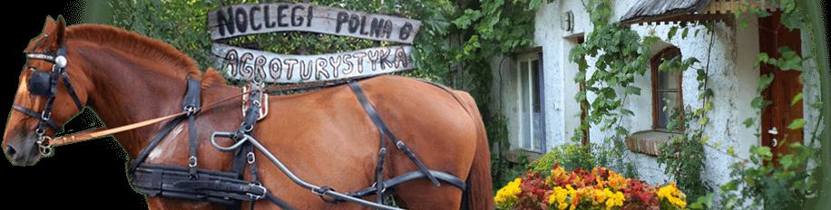 Gospodarstwo Agroturystyczne Polna6